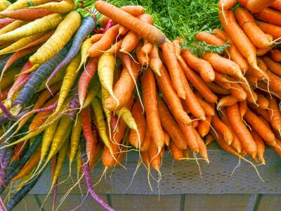 Types of carrots